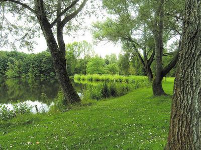 Bild vom Ufer des Steinertsees